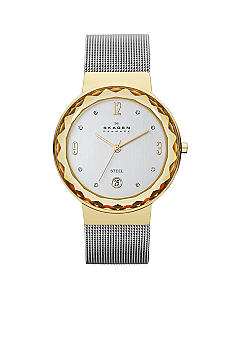 Skagen Ladies Silver Mesh Watch