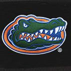 Florida Gators Gifts: Black Denco Florida Gators Hardside 20-in. Spinner - Online Only