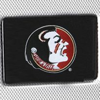 Denco Sports Luggage: Silver Denco Florida State Seminoles Hardside 20-in. Spinner - Online Only