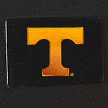 University of Tennessee Gifts: Black Denco Tennessee Volunteers Hardside 20-in. Spinner - Online Only