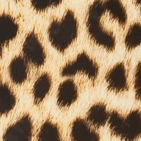 Spinner Luggage: Leopard Rockland 20