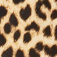 Lightweight Luggage: Leopard Rockland 20