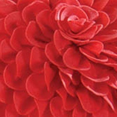 Quilts: Pink C&F KENZIE KNG BSKIRT