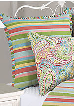 Bright Paisley Euro Sham 26-in.