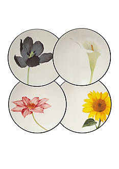 Noritake Colorwave Graphite Set of 4 Floral Appetizer Plates