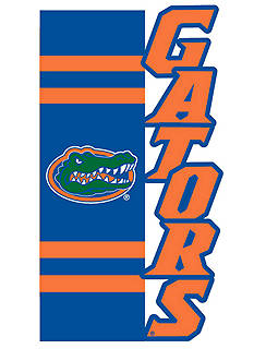 Evergreen Florida Gators Small Applique Flag