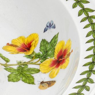 Portmeirion: White Portmeirion Exotic Botanic Garden Dragonfly Dinner Plate