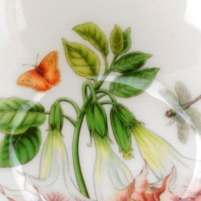 Portmeirion Dishes: White Portmeirion Exotic Botanic Garden Red Ginger Oatmeal Bowl
