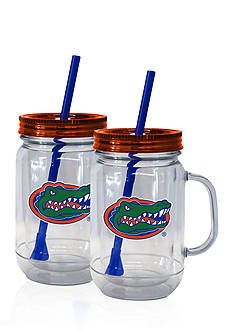 Boelter 20-oz. NCAA Florida Gators 2-Pack Straw Tumbler with Handle