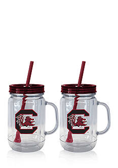 Boelter 20-oz. NCAA South Carolina Gamecocks 2-pack Straw Tumbler with Handle
