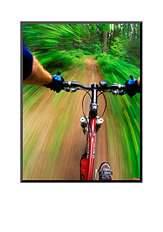 Art.com Mountain Bike Trail Riding by Chuck Haney Mounted Photo