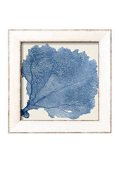 Art.com Sea Fan V, Framed Art Print by Vision Studio