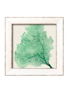 Art.com Sea Fan VII Framed Art Print
