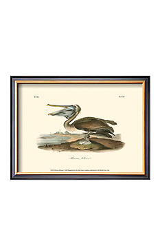 Art.com Brown Pelican, Framed Art Print, - Online Only