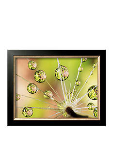Art.com Dandelion Framed Art Print