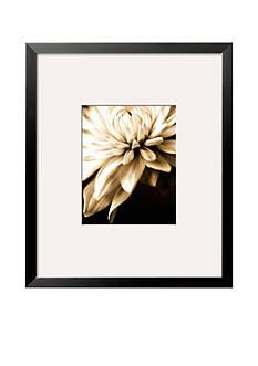 Art.com Radiance IV, Framed Art Print