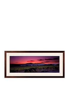 Art.com Vineyard at Sunset, Napa Valley, California, USA Framed Photographic Print