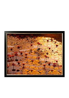 Art.com Lotus Pond, Framed Art Print, - Online Only