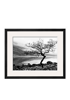 Art.com Solitary Tree on the Shore of Loch Etive, Highlands, Scotland, UK, Framed Photographic Print, - Online Only