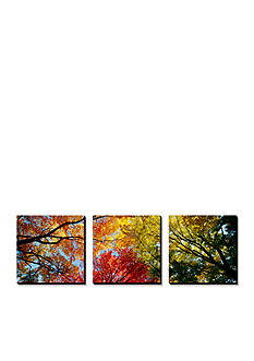 Art.com Colorful Trees in Fall, Autumn, Low Angle View, Canvas Art Set - Online Only