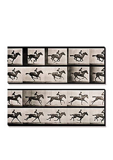 Art.com Jockey on a Galloping Horse, Plate 627 from Animal Locomotion, 1887, Canvas Art Set - Online Only