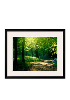 Art.com Track Leading Through Lanhydrock Beech Woodland with Bluebells in Spring, Cornwall, UK, Framed Art Print