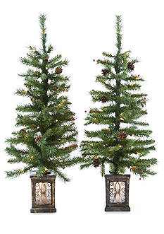Home Accents Set of 2 3.5-ft. Pre-Lit Porch Trees
