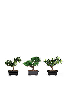Nearly Natural 8.5-in. Bonsai Silk Plant Collection