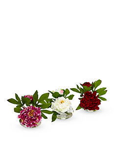 Nearly Natural Peony with Glass Vase Set