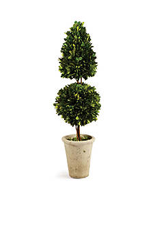 Napa Home & Garden™ 25-in. Boxwood Cone & Ball Topiary