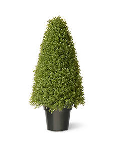 National Tree Company Boxwood Tree With Dark Green Growers Pot With 70 Clear Lights