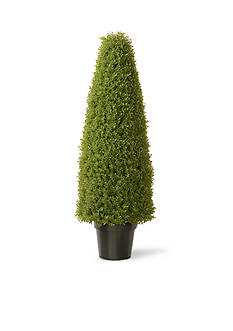 National Tree Company Boxwood Tree With Dark Green Growers Pot With 100 Clear Lights