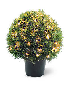 National Tree Company Cedar Pine Topiary With Round Green Growers Pot with 100 Clear Lights