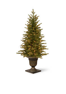 National Tree Company 4-ft. Nordic Spruce Entrance Tree