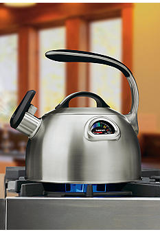 PerfecTemp Stainless Steel Tea Kettle - Online Only PTK330S