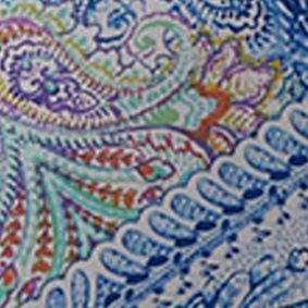 Duvets: Multi Echo Design™ PAINTED PAISLEY KING CSET