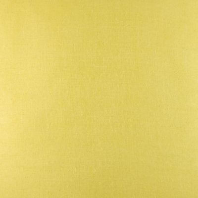 Modern Bedding: Slicker Yellow Ralph Lauren FLYINGPT SY 20X20