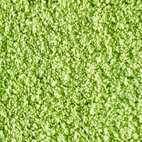 Kassatex Bed & Bath Sale: Kiwi Kassatex KASSADESIGN BRIGHTS 20X32 RUG