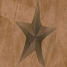 Elegant Bedding: Tan HiEnd Accents LUXURY STAR TW SHEET SET DS