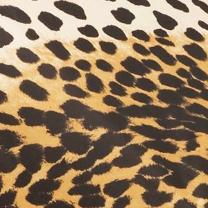 Totes: Leopard 2 Totes Ladies Auto Open Auto Close Compact Umbrella