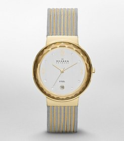Skagen Denmark Women's Two Tone Leonora Watch with Mesh Striped Bracelet