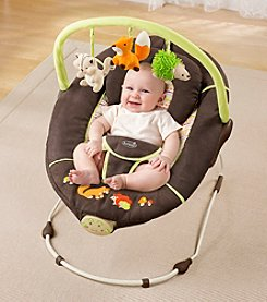 Summer Infant® Sweet Comfort Musical Bouncer - Fox and Friends