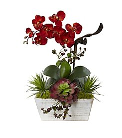 Nearly Natural® Seasonal Autumn Orchid and Succulent Garden With White Wash Planter