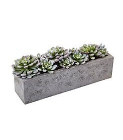 Nearly Natural® Succulent Garden with Textured Concrete Planter