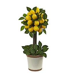 Nearly Natural® Lemon Ball Topiary Arrangement
