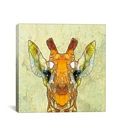 iCanvas Abstract Giraffe Calf by Ancello Canvas Print