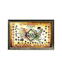 MLB® Tampa Bay Rays Baseball Parks Map Collage with Game Used Dirt