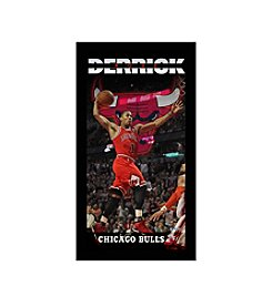 Derrick Rose Chicago Bulls Player Profile Wall Art 10