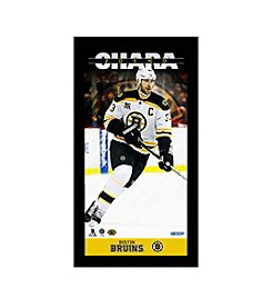 Zdeno Chara Player Profile 10