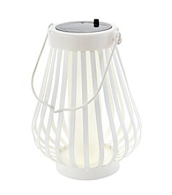 LivingQuarters Botanical Collection Solar Lantern